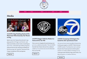 Media Page